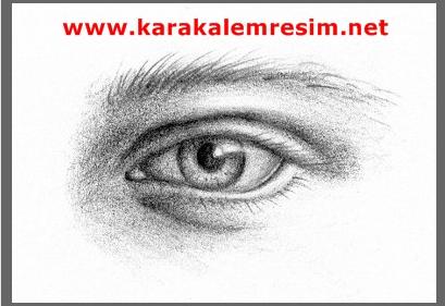 Karakalem Portre Sipariş Fiyatlar Karakalem Portre çizim Teknikleri
