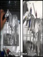 üç boyutlu 3d karakalem at çizimim,3d çizimler yapılırken hagi yöntemler kullanılır,teknikleri nelerdir,malzemeleri,bakış açısı,gölgelendirmesi,nereye verilir,en güzel at çizimleri,pencils,horse,türk,