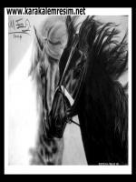 2004 yılına ait çok eski karakalem çalışmalarından birisi,siyah ve beyaz at ayrılık acısı çeken iki sevgili gibi portre resimedildi.karakalem duygulu resimlere en iyi örnek çalışmadır.resim halen evimde asılıdır.yelecharcoal horse portrait drawing pencils