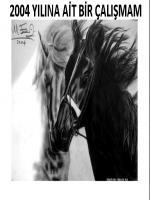 karakalem atlar ssevgililer ayrılık acısı çekerken karakaleme çevrildi siyah at yarışa gitmek üzereyken çekilmiş bir fotoğraftan esinlenilmiştir.beyaz at siayah ata göre daha kolay bir hayvan portresi oldu
