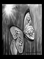karakalem kelebek üzerine allah muhammed lafzı çalışmaları,çizimleri,örnekleri,kelebeğin kanadı üzerindeki şekillerden esinlenmiştir.en güzel kelebek fotoğrafları,resimleri,yüksek çöznürlüklü,tabloları