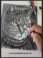 karakalem çizim aşamlarına bir örnek daha genelde soladan sağa doğru çizimler yaparım resim kirliğiliğini en aza indirmek için en sol üstten sol alata oradanda sağ üstten sağ alra doğru çalışırım koyu siyah saçlarda kalem yerine kömür dağıtmak ve özel