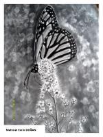 karakalem kelebek cizimi cizimde en zor yerler kanattaki desenlerdir cizim süresi 4 saat kafeye için tablo şekline çizidrmek isteyen sanatsevere yardımcı olundu