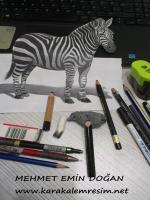 üç boyutlu karakalem zebra çalışmam,hayvan çalışmaları içinde en iyi 3d çizimlerden biri oldu.zebra ve at çizimleri karakaleme çok uyumlu hatları vardır,en güzel 3d karakalemler,çizimler,örnekler,galerisi,tekniği,kalemleri,kağıdı,videoları,türkiyede,yapan
